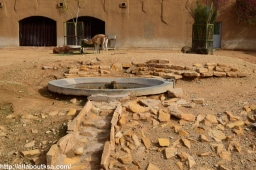 Riyadh Zoo (10)