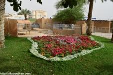 Riyadh Zoo - Landscape