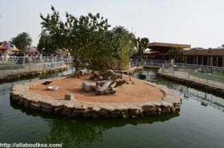 Riyadh Zoo (41)