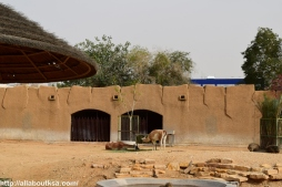 Riyadh Zoo (9)