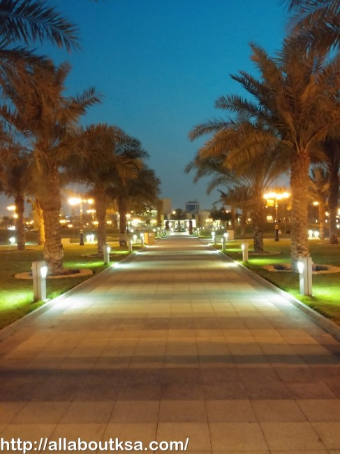Abdullah Park (28)