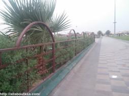 Abdullah Park (4)